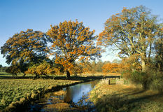 EXCLUSIEF rivierlandschap - royalty-vrije stock foto