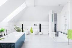 Exclusieve heldere badkamers royalty-vrije stock afbeeldingen