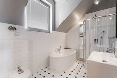 Exclusive decor of washroom. White exclusive decor of washroom in new house stock image