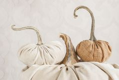 Exclusive designer pumpkins for decorating the holiday of Hallow Stock Image