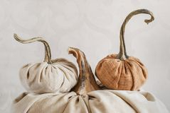 Exclusive designer pumpkins for decorating the holiday of Hallow Stock Photo