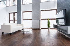 Exclusive living room interior Stock Image