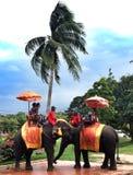 Excursão asiática 2016 Imagem de Stock Royalty Free