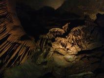 Excursão da caverna de Kentucky EUA das cavernas do Mammoth Foto de Stock