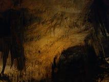 Excursão da caverna de Kentucky EUA das cavernas do Mammoth Fotos de Stock