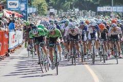 Excursão da raça da bicicleta de Alberta Fotos de Stock