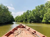 Excursão do barco dos manguezais do rio de Camboja foto de stock
