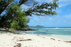Excursão do beira-mar de Seychelles Imagens de Stock