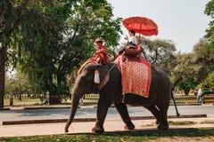 Excursão do passeio do elefante da cidade Ayutthaya, Tailândia Fotografia de Stock