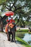 Excursão do passeio do elefante da cidade Ayutthaya, Tailândia Foto de Stock