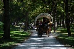 Excursão do vagão Fotos de Stock Royalty Free
