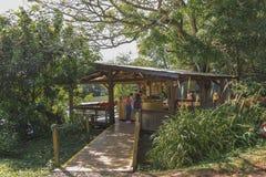 Excursão ecológica no parque de Iguazu em Argentina Fotografia de Stock