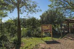 Excursão ecológica no parque de Iguazu em Argentina Foto de Stock