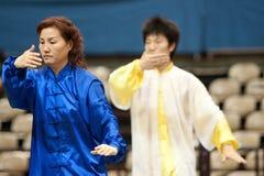 Excursão italiana dos heróis 2010 de Kung Fu Imagem de Stock