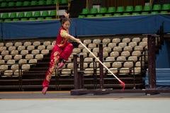 Excursão italiana dos heróis 2010 de Kung Fu Fotos de Stock