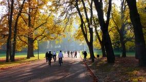 Excursión de domingo en el parque Fotografía de archivo libre de regalías