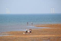 Excursión de la familia por el mar Fotografía de archivo