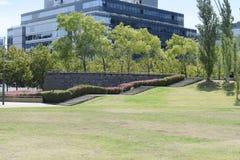 Excursión del día de verano en el parque de la ciudad Imagen de archivo