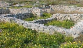 Excursión en verano con las ruinas de la ciudad vieja Imagen de archivo libre de regalías