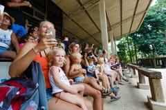 Excursión turística, demostración de elefantes, a Samui Fotos de archivo libres de regalías