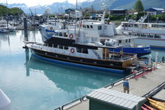 Excursion boats tied at the port of valdez. Stock Photography