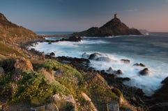 Excursion de la Parata, Corse Image libre de droits