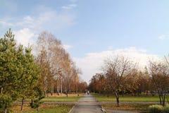Excursion de marche en stationnement d'automne. Octobre Photographie stock libre de droits