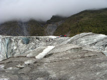 Excursion on Fox glacier Stock Photography