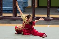 Excursion italienne des héros 2010 de Kung Fu Image libre de droits