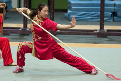 Excursion italienne des héros 2010 de Kung Fu Images stock