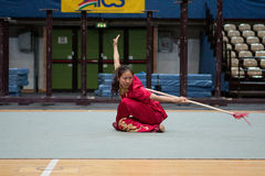 Excursion italienne des héros 2010 de Kung Fu Images libres de droits