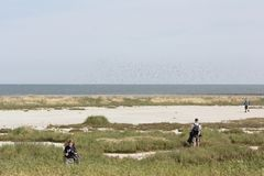 Excursion of natural monuments to the Wadden island Griend Royalty Free Stock Image