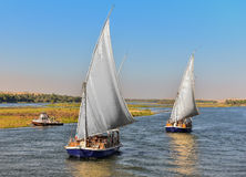 Excursion on the river Nile felucca in Egypt. Felucca, a traditional Egyptian boat, surrounded by nature, flowing river Nile Stock Photography