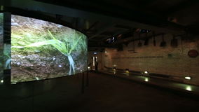 Excursion to the Guinness Storehouse stock video