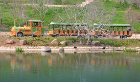 Excursion Train on a Lake Shore Stock Photo