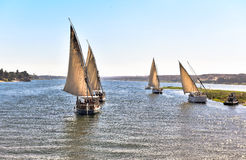 Excursion on the wide river Nile felucca in Egypt. Felucca, a traditional Egyptian boat, surrounded by nature, flowing river Nile Royalty Free Stock Photography