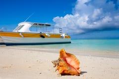 Excursions d'île Photo libre de droits