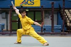Excursão italiana dos heróis 2010 de Kung Fu Fotografia de Stock Royalty Free