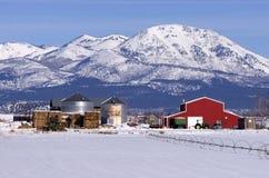Exécution moderne de ranch de bétail en montagnes de l'hiver Photographie stock libre de droits