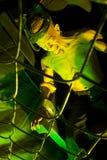 Execução da cadeira elétrica fotografia de stock royalty free
