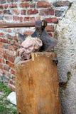 Execution axe and head, Fair, Medvedgrad, Europe 2015. Stock Photos