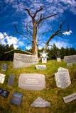 Execution wall royalty free stock photos