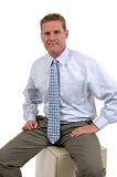 Executive Royalty Free Stock Images