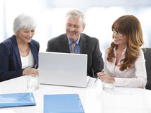 Executive Business Team Royalty Free Stock Image