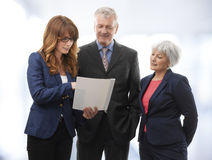 Executive Business Team Stock Photography