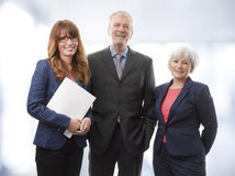 Executive Business Team Stock Image