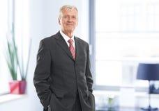 Executive businessman Royalty Free Stock Photos