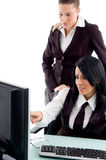 Executive indicating towards computer Stock Photos