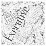 An Executive Resume Should Be Short Precise And Have An Air Of Confidence. word cloud concept  background. Text Royalty Free Stock Image
