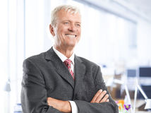 Executive senior businessman. Portrait of executive senior businessman standing at office. Business people Stock Photography